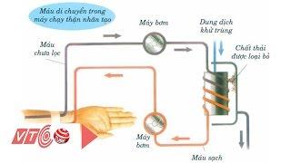 Lưu ý khi chạy thận nhân tạo để lọc máu | VTC