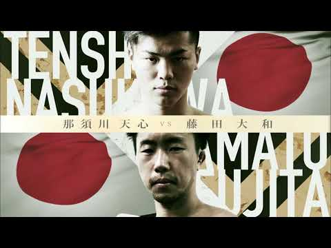 What Is RIZIN?