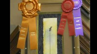 PPFA 2010 Judges Award Redux_2.wmv