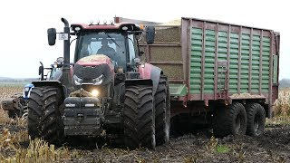 Case IH 300 Optum, Fendt 933 Vario & John Deere 8370R Working Hard in The Mud | Häckseln 2017