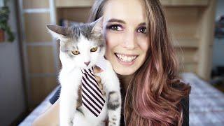 Aliexpress Cat Toys & Clothes Haul | Tjaša Deu