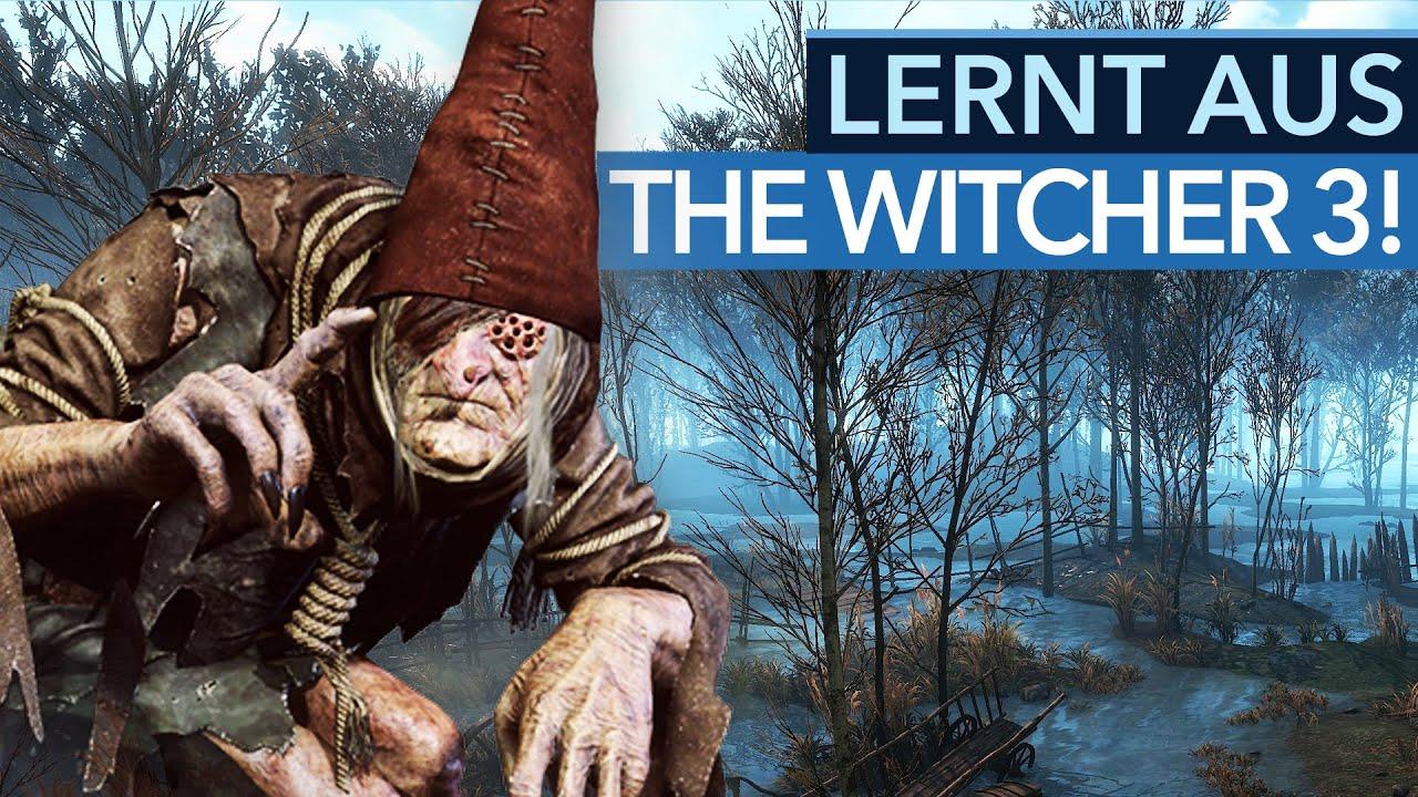 Witcher 3 Bärenrüstung Quest