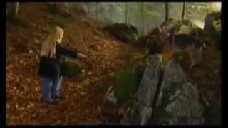 Девочка и волк   Mein Freund der Wolf 1999 фильм