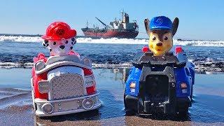 Patrulla de Cachorros - Paw Patrol Aventura en la Playa | Video Educativo para Niños