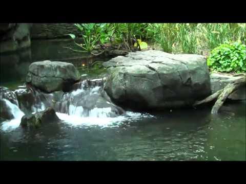 Ganesh Mantra- (NEW)