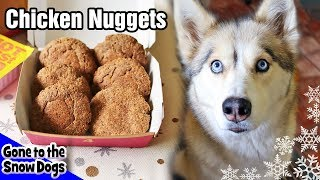 How to Make Chicken Nuggets for Dogs |  DIY Dog Treats Recipe 102