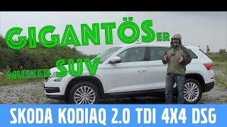Skoda Koadiaq Style 2.0 TDI 4x4 DSG (190 PS) -  Test, Review und Fahrbericht / Testdrive