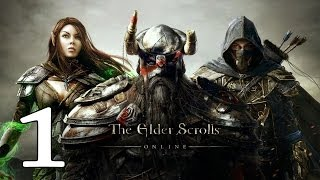 THE ELDER SCROLLS ONLINE | Let