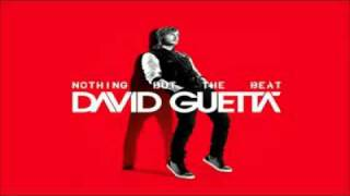 David Guetta   The Alphabeat NOTHING BUT THE BEAT new album