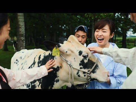 015 美人牛さんに挨拶してみた~北海道は牧場日和。~