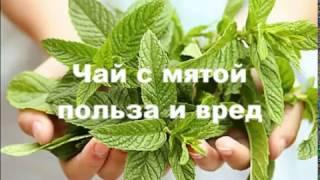 видео Вопрос: Чем полезен Иван-чай и его свойства