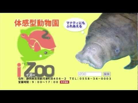 iZoo CM 15秒 ( iZooはいずこだ!?伊豆! iZoo! )