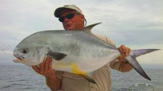 Wreck Fishing for Monster Permit off of St Petersburg Florida