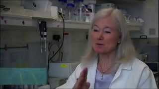 Professor Dame Kay Davies and the work toward a cure to Duchenne Muscular Dystrophy
