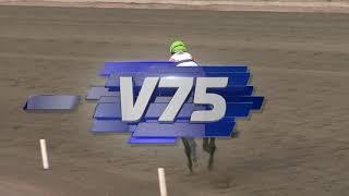 Vidéo de la course PMU PRIX BRIZYS MONTÉRYTTARSERIE - OMGANG 3