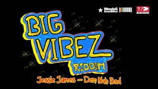 VA Big Vibez Riddim 2013 | Busy Signal, Assassin, Perfect, Jessie James, Melloquence, Villa Dutch
