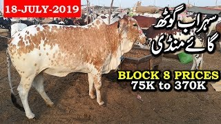 Karachi Sohrab Goth Cow Mandi Block 8 Prices Update 18 July 2019 || Cow Mandi Karachi 2019