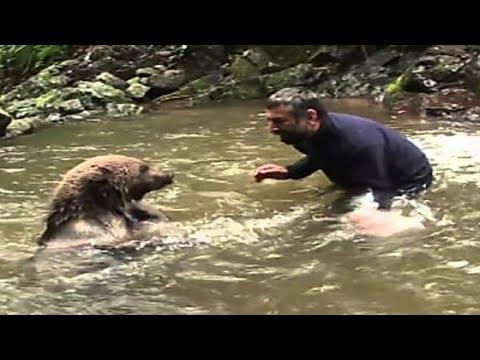Медведица не могла спасти медвежат из холодной воды но то что случилось дальше удивило весь мир