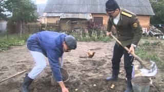 КавалЭри - Бульбокопи(Сьо КавалЭри так бульбу копають! http://vk.com/sio.kavaleri Наша група (