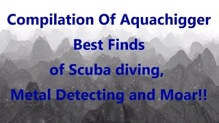 Compilation Of Aquachigger Best Finds