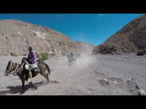 THE ATACAMA HORSEBACK EXPEDITION - CHILE