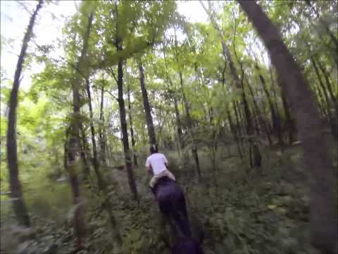 Wild, Slippery, and Bloody 6 mile Cross-country Race with many jumps