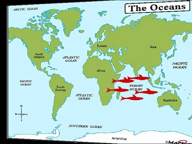 Our Worlds Oceans Lakes And Rivers Lessons Tes Teach - Map of world oceans