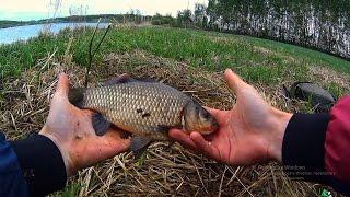 Рыбалка на карася в сильный ветер.Вот это карась, так карась!