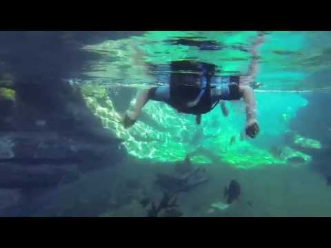 Snorkeling @ Ushaka Marine World in Durban, South Africa