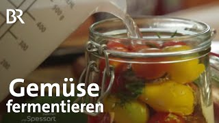 Gemse fermentieren Haltbar machen durch milchsaure Grung  Zwischen Spessart und Karwendel  BR
