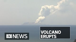 New Zealand volcano erupts on White Island causing fears for missing people | ABC News