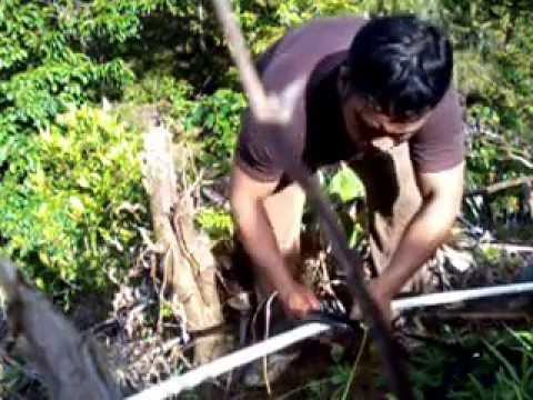 Perbaikan pipa air irigasi kolam ikan dibukit labuah gajah Sumatera Barat