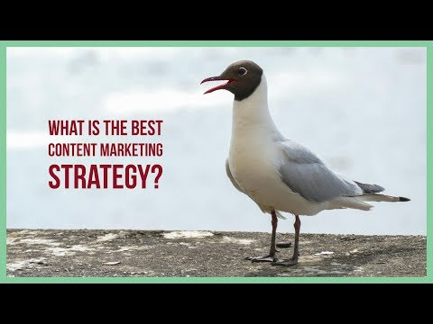 What Is The Best Content Marketing Strategy? - FREE Online Digital Marketing Training