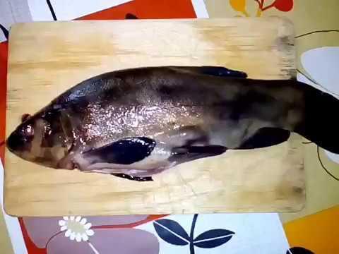 Как приготовить вкусно рыбу ЛИНЬ!