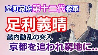 足利将軍家シリーズ 室町幕府第12代将軍「足利義晴」