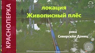 Русская рыбалка 4 река Северский Донец Красноперка у базы