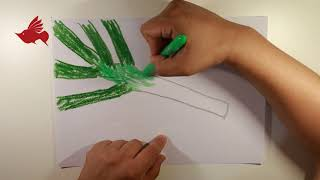 Teach children to draw scallions with crayons---GQHJ