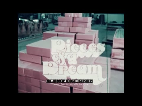 "BEDE BD-5 MICRO AIRCRAFT  PROMO FILM  ""PIECES OF A DREAM""  25014"