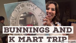 Bunnings and k mart trip II beauty bugs tv II