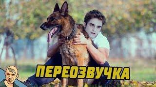СУМЕРКИ - БЕЛЛА И ВПИСКА АНТИ-ВЕРСИЯ ПЕРЕОЗВУЧКА 3