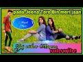 Pada Jeena Tere Bin Meri Jaan(Dj Deepak Vaishnav Bageena )