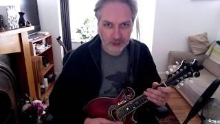 The Lady On The Island (reel) on mandolin
