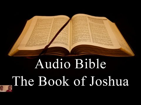 The Book of Joshua - NIV Audio Holy Bible - High Quality and Best Speed - Book 6