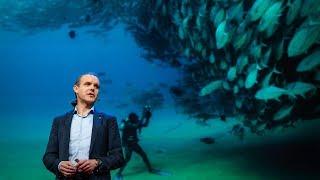 Давайте звернемося у відкритому морі в найбільшому в світі заповіднику   Енрік сала