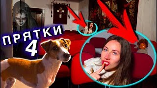 TERRIBLE HINDERS Something Went NOT SO in Ghost House with Gina the Dog | Elli Di Pets