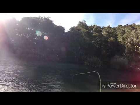Waitahanui River Fishing