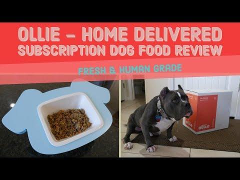 Ollie Human Grade Dog Food Review 2019