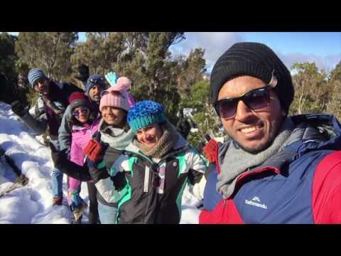 Hartz Mountain travel video