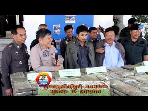ข่าวชุมพรออนไลน์ รวม แถลงจับกุมกัญชา 448 กิโล มูลค่า 10 ล้านบาทวันที่ 10 กุมภาพันธ์ 2559