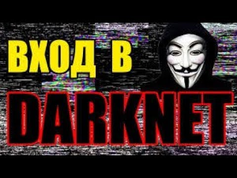 Как скачать даркнет hidra project darknet